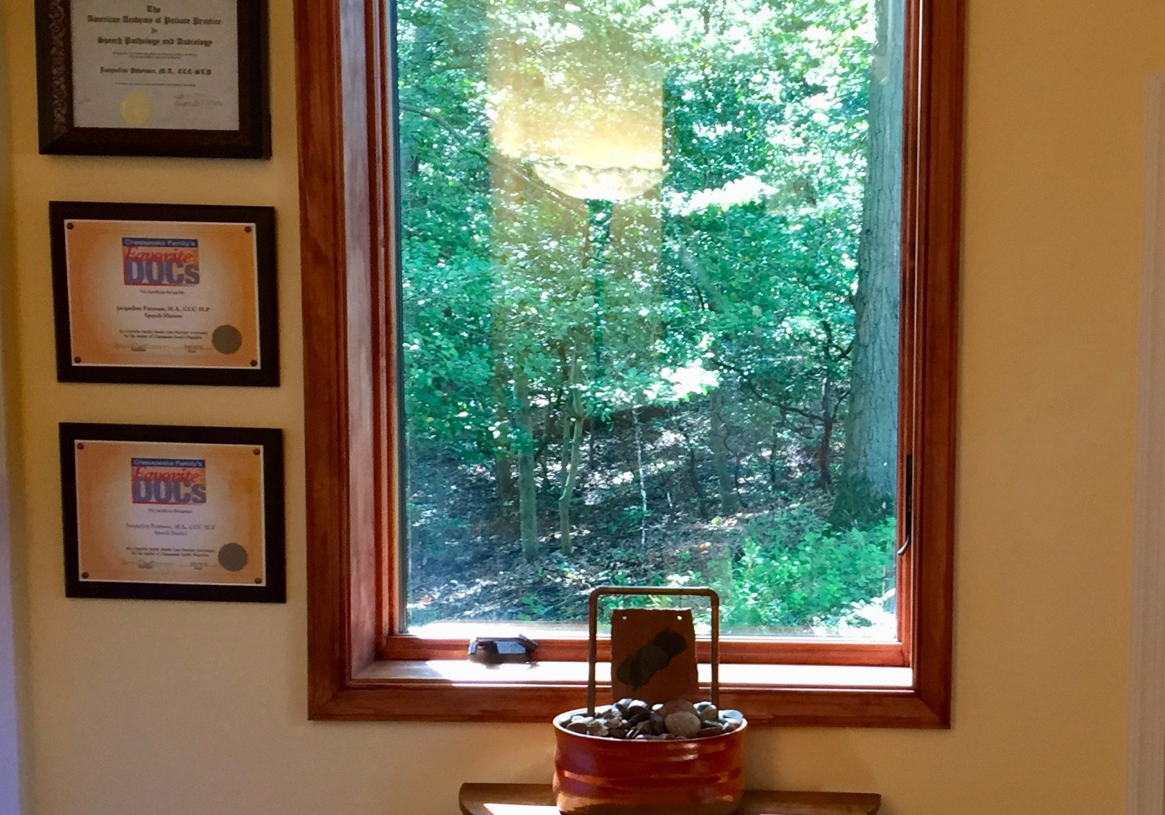 Waiting room window looking out into forested area